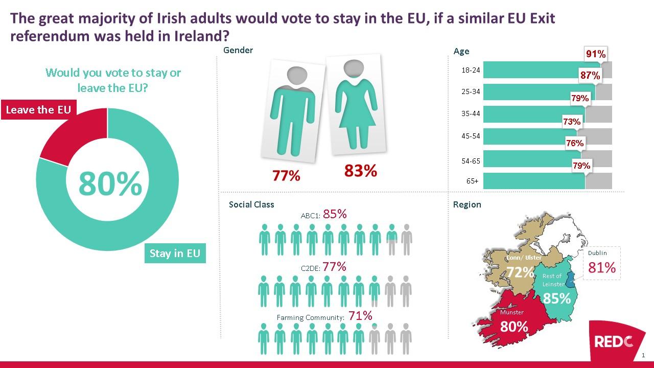 demogs-we-eu-vote